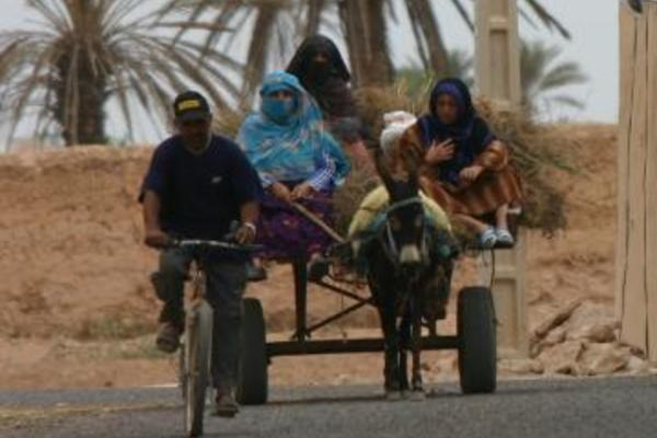 Photo of people travelling on a dirt road
